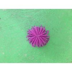 Anémone Violette Medium Décoration Aquariums