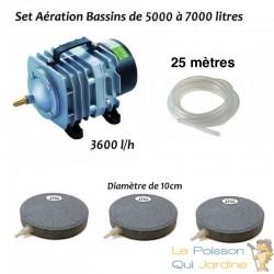 Set aération N2 bassin de jardin de 5000 à 7000 litres
