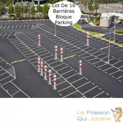 Lot de 10 Barrières bloque parking et de stationnement. 70 cm