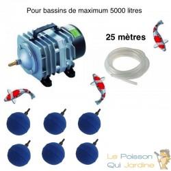 Set aération bassin de jardin de 3000 à 5000 litres avec 6 boules diffuseurs