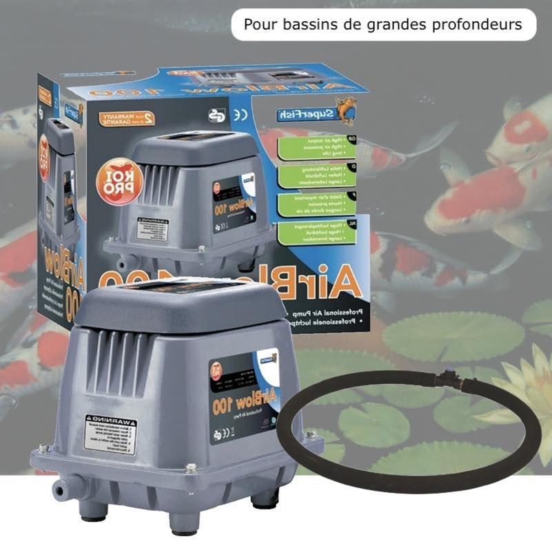 Kit Pompe A Air Bassin Profond 3000 l/h + Diffuseur 50 cm. Aérateur Bulleur efficace