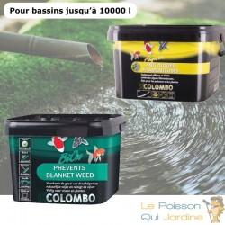 Pack anti algues filamenteuses et oxygène pour bassins de max. 10000 litres