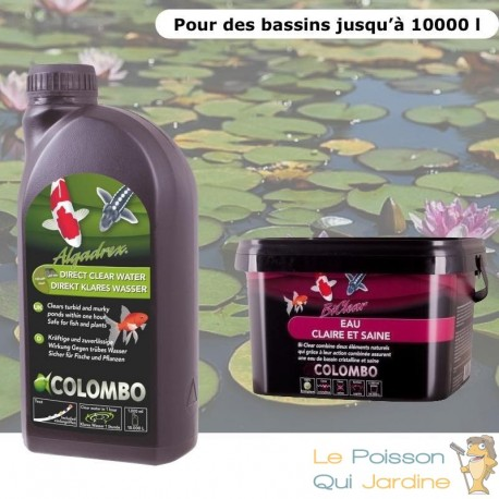 Pack anti eau verte et clarté optimale pour bassins de max. 10000 litres