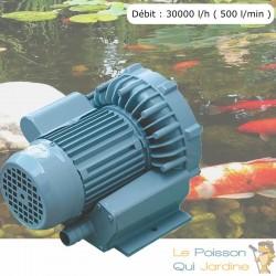 Pompe À Air Vortex Turbine 30000 l/h ( 500 l/min ) Pour Bassins De Jardin, Hydroponie