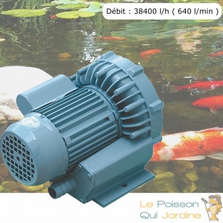 Pompe À Air Vortex Turbine 38400 l/h ( 640 l/min ) Pour Bassins De Jardin, Hydroponie