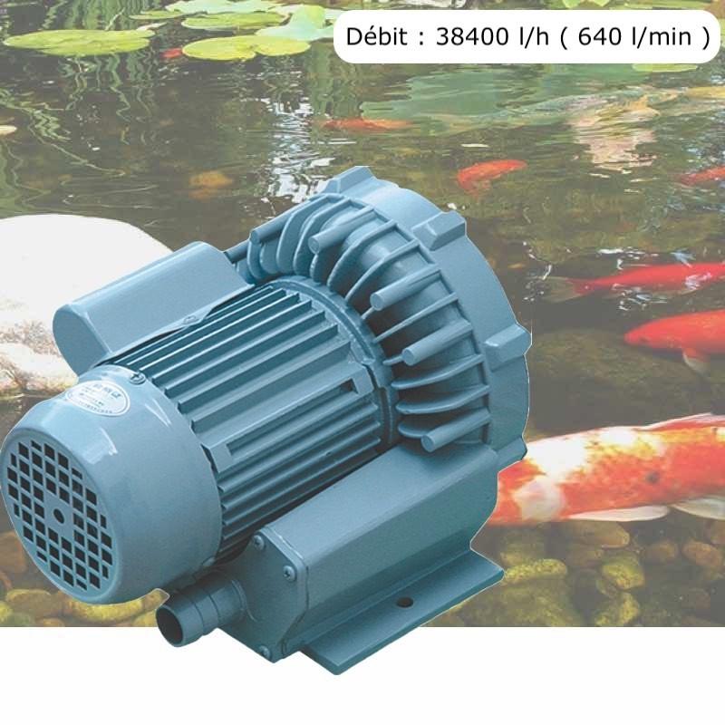 Pompe À Air Vortex Turbine 38400 l/h Pour Bassins De Jardin, Hydroponie
