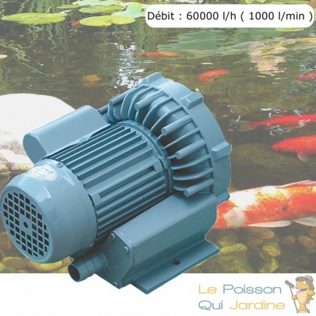 Pompe À Air Vortex Turbine 60000 l/h ( 1000 l/min ) Pour Bassins De Jardin, Hydroponie