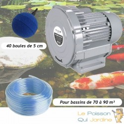 Kit Pompe À Air Vortex Turbine 79200 l/h + 40 Boules Pour Bassins De Jardin